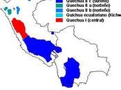 Organización administrativa Imperio Inca