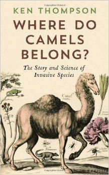 Reseña: Where do camels belong?