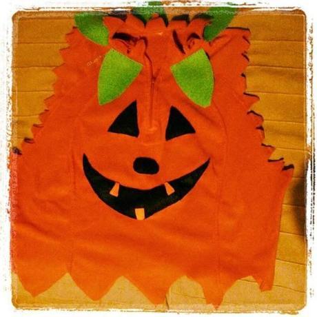 Disfraz Casero De Calabaza Para Halloween Cool Excellent Cheap