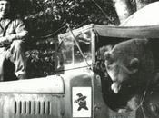 soldado Wojtek
