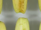 ¿Una manzana estas mantiene doctor alejado?