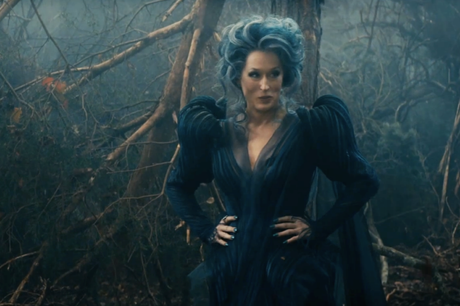 Into the woods - Meryl Streep (Bruja)