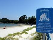 Playa para Perros Concello Ares