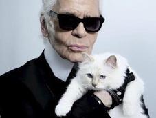 gata Karl Lagerfeld heredará fortuna cuando muera diseñador