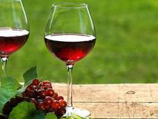 estudio demuestra beber vino moderación bueno para ciclistas