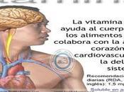 vitaminas factores accesorios