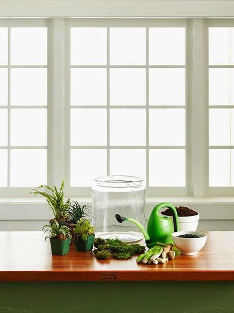 Crea tu propio terrarium en casa mini jardines urbanos for Crea tu casa