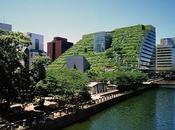 Innovación agro urbana