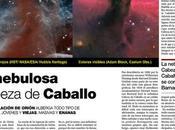 Zoco Astronomía: Nebulosa Cabeza Caballo