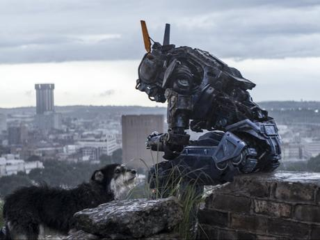chappie-movie-2015-stills-wallpapers
