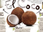 Propiedades nutritivas Coco