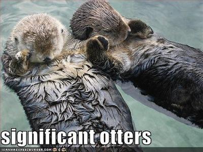 significant otters meme