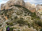 Roques Benet desde área recreativa Franqueta. ports