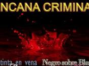 Yincana Criminal: nueva locura divertida