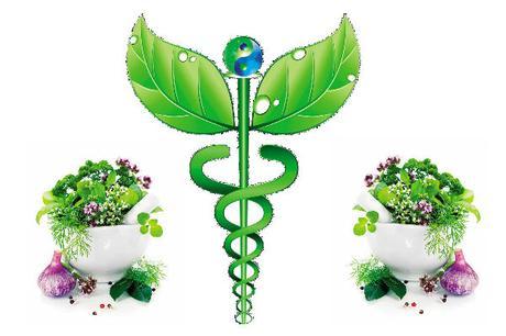 Image result for medicina alternativa
