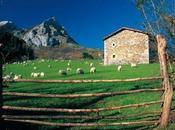 Éxito total casas rurales como destino Semana Santa: lugares deseados