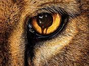 Póster promocional 'Zoo', nueva serie veraniega