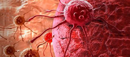 Científicos transforman células de cáncer en inofensivos glóbulos blancos