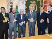 """Diputación Sevilla, incluye Montequinto """"Guia Arroz"""""""