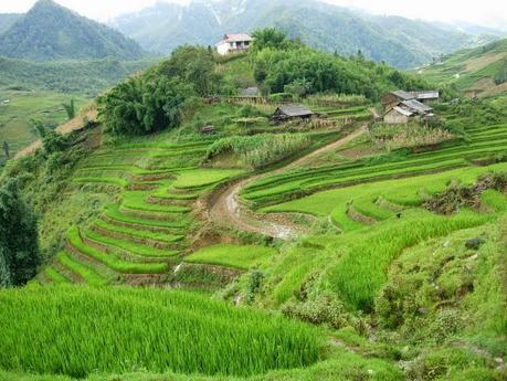 Recorrido por Vietnam - Camboya (septiembre 2005)