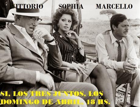 Ayer, hoy y mañana; Sophia Loren eterna...