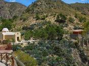 Sale antiguo poblado XVII Crevillente (Alicante)
