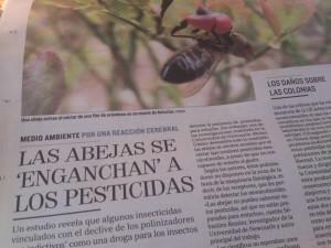Abejas insecticidas pesticidas