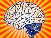 Conservar proteger cerebro: ¿Por qué? ¿Cómo?