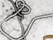 Escépticos pub: Virus emergentes ¿emergencias?