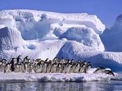 Como seria tierra todo hielo glaciares derritiera ?... vídeo.