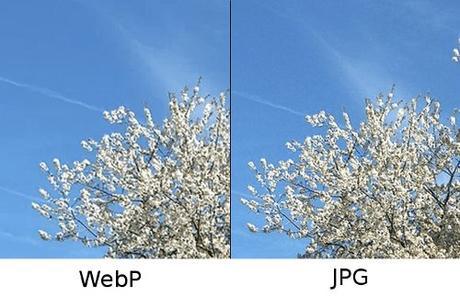 BPG (Better Portable Graphics) Es-el-mejor-formato-mis-imagenes-L-T3Io3F