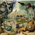 La ecología y la fauna en peligro