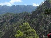 cosas hacer Palma (Canarias)