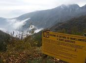 Anillamiento Alpes Progetto Delle Alpi Stazione Passo Spino 21-27 Octubre 2010