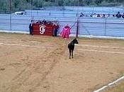 Capea-convivencia asociación toro cuerda carcabuey