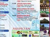 Programa fiestas Salinas 2015