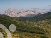 bosques, quebrantahuesos urogallos Picos Europa