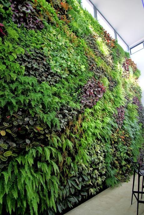 Jard n vertical en matimex castell n paperblog for Jardin vertical castellon