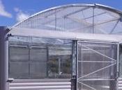 Invernadero bioclimático para Universidad Murcia