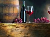 traducción sector vino
