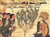 Economía Sociedad al-Andalus