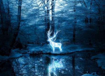 Viaje a otras realidades. De chamanes y cuentos fantásticos