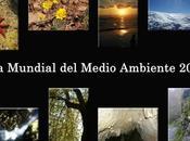 Mundial Medio Ambiente 2015
