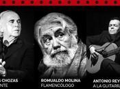 Recorrido palos flamenco exclusiva, tribueñe
