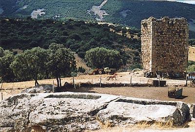 La Repoblación de los Montes de Toledo (I)