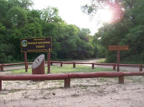 El Parque Nacional Chaco desde siempre fue área de quebrachales