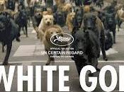 """Crítica: """"White God"""""""