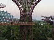 Gardens Bay, jardín magia Singapur