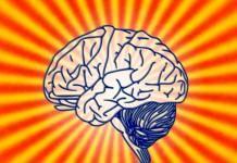 La meditación altera la estructura del hipocampo de manera diferente en mujeres y hombres