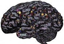 Las personas con ansiedad social tendrían mucha de serotonina y no poca, como se pensaba